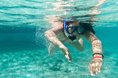 Snorkeling in the Caribbean Sea — Stock Photo