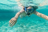 Snorkeling in the Caribbean Sea — 图库照片