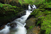 Beautiful waterfall of Clare Glens — Stock Photo