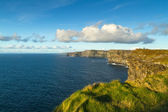 Cliffs of Moher in Co. Clare — Foto Stock