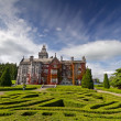 Adare manor in red ivy and gardens — Stock Photo #8053577