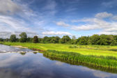 Idyllic golf course — Stockfoto