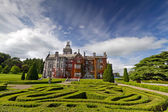 Adare manor in red ivy and gardens — Stock Photo