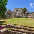Pyramid El Castillo in Tulum — Stock Photo #8591025
