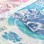 Fifty zloty banknote — Stock Photo #9022732