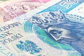 Elli zlotisi banknot — Stok fotoğraf