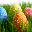Colorful Easter eggs — Stock Photo #9382077