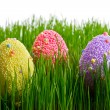 Colorful Easter eggs — Stock Photo #9382127