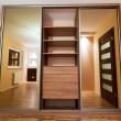 Stock Photo: Huge wardrobe of modern apartment