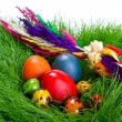 Painted easter eggs — Stock Photo #9857549