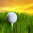 Stock Photo: Golf ball on tee i