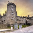 Kilkenny Castle at dusk - Stock Photo