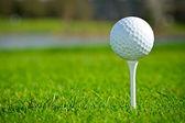 Golf ball op ierse cursus — Stockfoto