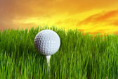 Golf ball on tee i — Stockfoto