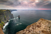 Cliffs of Moher at sunset — Zdjęcie stockowe