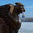 Griffin in St. Petersburg — Stock Photo #8832890