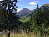 Valle di montagna — Foto Stock