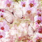 Mariposas y orquídeas flores de color rosa de fondo (1 de conjunto) — Foto de Stock