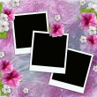 Vintage background with frames for photos, flowers, lace — Stock Photo