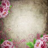 Retro background in vintage style with roses — Stock Photo