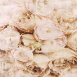 Textured background with beige roses and space for text - Stock Photo