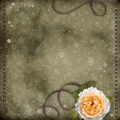 美丽背景与红玫瑰 — 图库照片