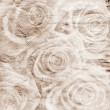 Vintage romantic background with roses — Stockfoto
