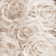 Vintage romantic background with roses — Stock fotografie