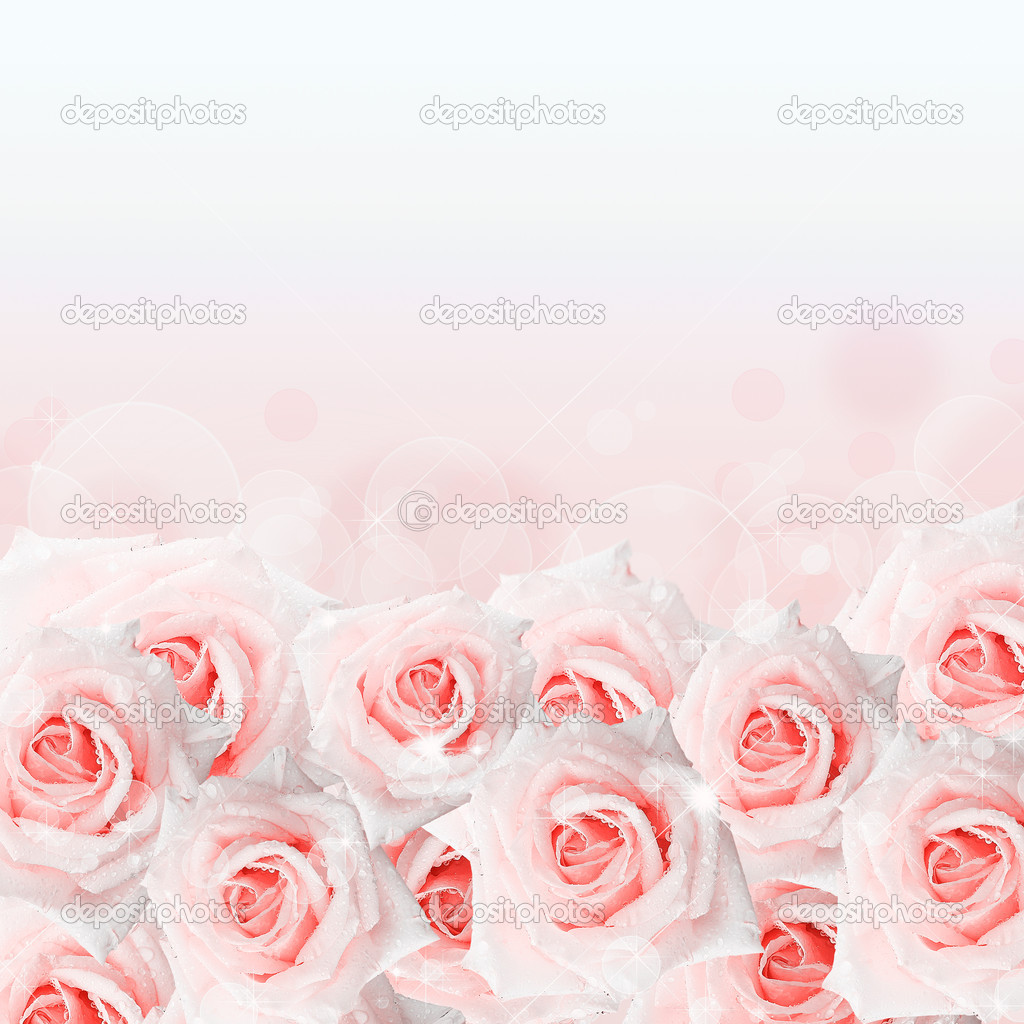Pink  roses background with bokeh — Stock Photo #8743119