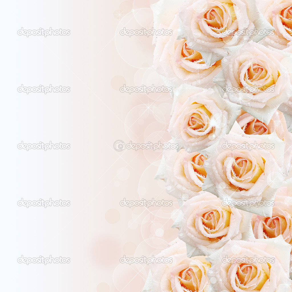 Cream  roses background with bokeh — Stock Photo #8743209
