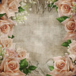 Wedding vintage romantic background with roses — Stock Photo #8862150