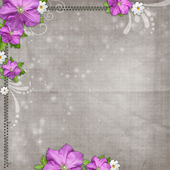 Abstract textured background with daisy and lilac flower — Stock Photo