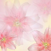 Beautiful pink flowers made with color filters — Stock Photo