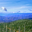 Montanhas Great smoky, EUA — Foto Stock #9640389