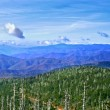 Great smoky mountains, Verenigde Staten — Stockfoto #9640389