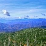 Great smoky mountains, usa — Stockfoto