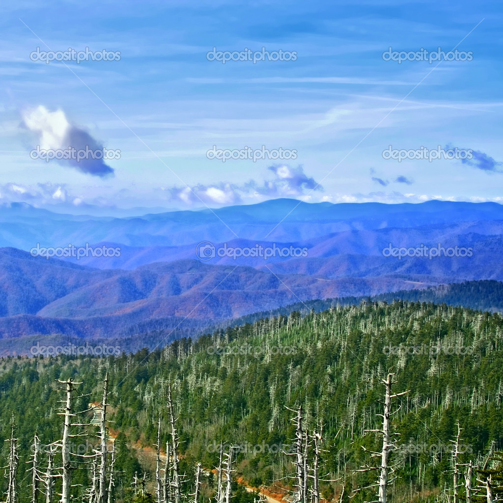 National park Great Smoky Mountains, USA — Stock Photo #9640389
