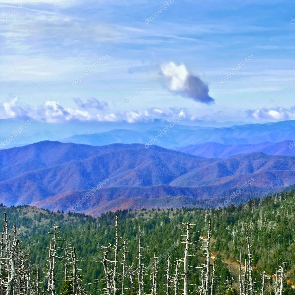 National park Great Smoky Mountains, USA — Stock Photo #9640394