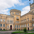Neo-gothic castle / Jablonowo Pomorskie - Stockfoto
