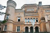 Narzymski Palace / Jablonowo Pomorskie — Stok fotoğraf
