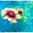 Flowers - watercolor blue painting - Zinnia - Stock Photo