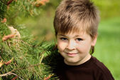 A boy in a park near Pine — Stock Photo
