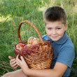 Boy with a basket of red apples in the garden - Stock Photo