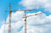Two cranes on blue sky background — 图库照片