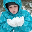 Foto de Stock  : Boy in snowy winter park