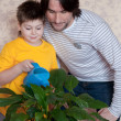 Stock Photo: Dad and son watering the flower room