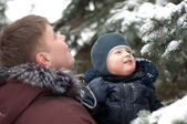 Dad and son on a walk in the woods in winter — Stock Photo