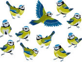 Blue tits — Vector de stock