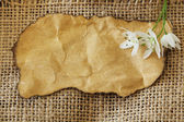 Old paper tag on natural burlap with a flower — Стоковое фото
