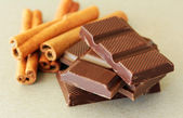 Chocolate pieces with cinnamon — 图库照片